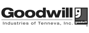 Goodwill Tenneva Logo
